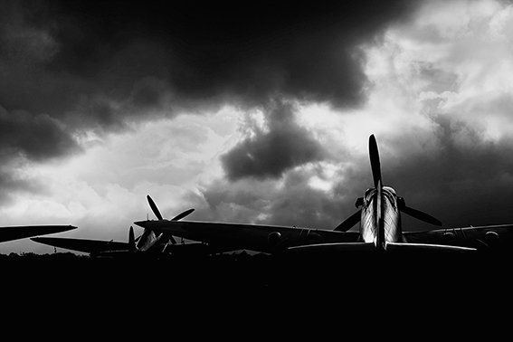 Goodwood image:  Spitfires